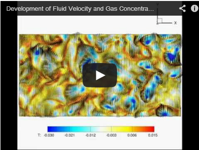 Development of Fluid Velocity and Gas Concentration Mapping