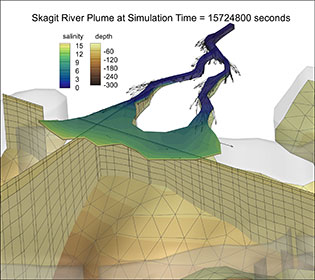 Skagit River salinity plume visualization with Tecplot 360
